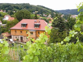 Weingut Mariaberg - App. Marias Glück - Meissen vacation rentals