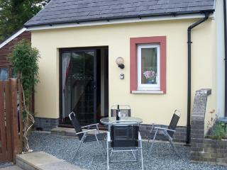 Perfect House with Television and DVD Player - Llansteffan vacation rentals