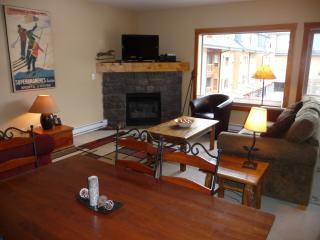 Beautiful,condo, 3 Bedrooms,2 bath.Great location - Canmore vacation rentals