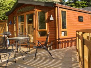 2 bedroom Lodge with Internet Access in Blair Atholl - Blair Atholl vacation rentals