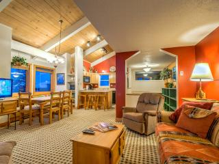Best Location on Mountain, Walk to the Slopes - Steamboat Springs vacation rentals
