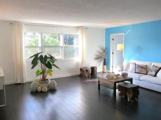 X large 1 bedroom apt, south beach, close to beach - Miami Beach vacation rentals
