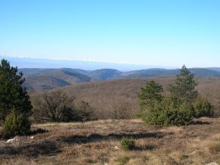 Parc Naturel du Haut Languedoc, alt 480m loue gite - Rieussec vacation rentals