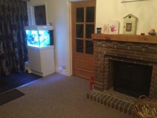 Beautiful spacious home near historic Portsmouth - Havant vacation rentals