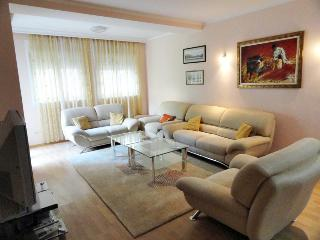 Beautiful two-bedroom apartment in the centre - Budva vacation rentals