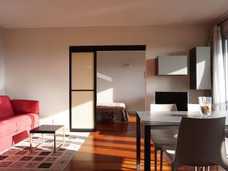 215027 - rue Saint Säens - PARIS 15 - 7th Arrondissement Palais-Bourbon vacation rentals