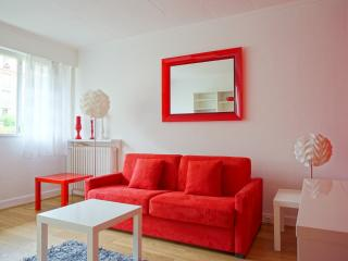 115005 - rue Saint Charles -PARIS 15 - Vanves vacation rentals