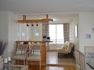 4 bedroom Apartment with Internet Access in Concon - Concon vacation rentals