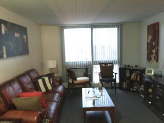 cozy one bedroom apt / mccormick place/bronzevill - Chicago vacation rentals