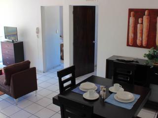 Spend less, get more! 2 bedroom apartment - Guadalajara vacation rentals