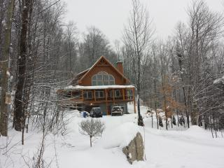 1 bedroom Cottage with Internet Access in Sainte-Adele - Sainte-Adele vacation rentals