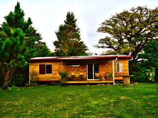 Casa Del Bosque (Forest House) - Santa Elena vacation rentals