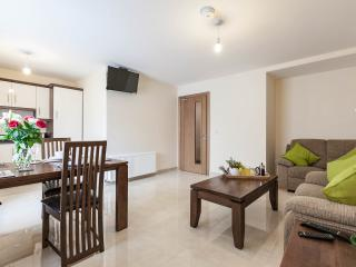 The Five Lamps 2  bed Luxury Suites - Dublin vacation rentals
