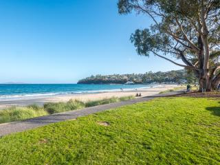 Beautiful appartment 30 seconds walk to the sand - Hobart vacation rentals