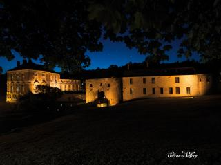 28 bedroom Castle with Internet Access in Vallery - Vallery vacation rentals