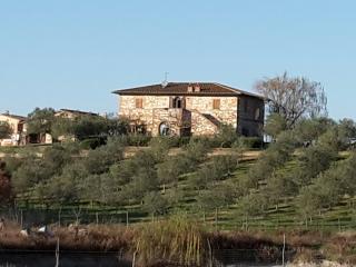 L'agriturismo Bellavista - Asciano vacation rentals
