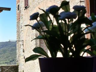 Dreamy Views from Historical Centre - Cortona vacation rentals