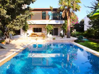 Perfect Villa with Balcony and Hot Tub - Bodrum vacation rentals