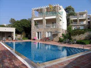 Comfortable Bodrum Villa rental with Internet Access - Bodrum vacation rentals