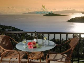 Nice Condo with Internet Access and Washing Machine - Bodrum vacation rentals