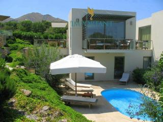 5 bedroom House with Internet Access in Bodrum - Bodrum vacation rentals