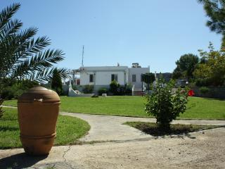 Villa 4 bedrooms, garden, quiet location, nudism - Archangelos vacation rentals