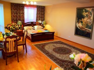 One bedroom apartment 31 - Novosibirsk vacation rentals