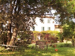 """Domaine de la salutière """" La Grande Maison 3ch """" - Lauraguel vacation rentals"""