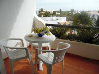 Carmen House - 2 Pools - 400 m from the beach - Albufeira vacation rentals