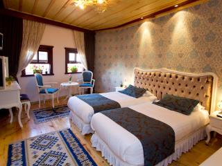 Esans Hotel&House - Istanbul vacation rentals