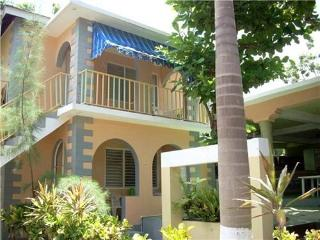 2 bedroom apartment, 1 min walk from beach (T) - Negril vacation rentals