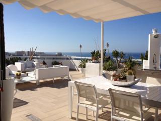 Modern spectacular penthouse wifi free Las America - Playa de Fanabe vacation rentals