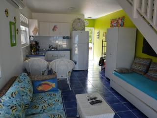 Oceanfront Island Gem with Great Snorkeling/Diving - Westpunt vacation rentals
