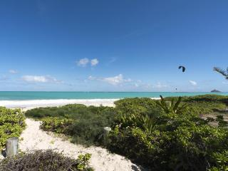 Nice House with Internet Access and Satellite Or Cable TV - Kailua vacation rentals