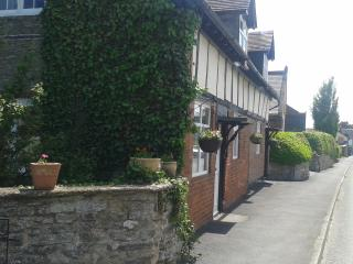 Charming House with Internet Access and DVD Player - Ashford Bowdler vacation rentals
