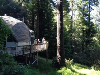 Geodesic dome in a redwood clearing - Cazadero vacation rentals