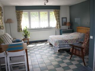 Gîte: un studio spacieux  en rdc ds maison habitée - Lisieux vacation rentals