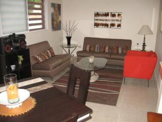 new, clean, centrally located. - La Paz vacation rentals