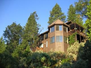 Yosemite Vacations, Magnificent Views & a Hot Tub! - Fish Camp vacation rentals