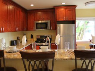 Luxury Beach Vacation Rental 01 - Carlsbad vacation rentals