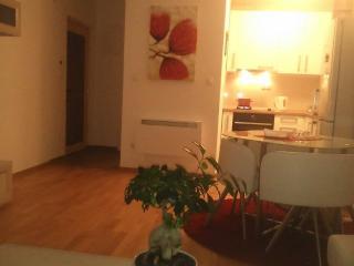 1 bedroom Apartment with Internet Access in Bihac - Bihac vacation rentals