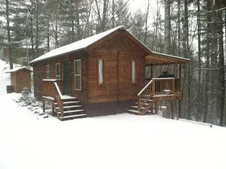 The Pines - Franklin vacation rentals