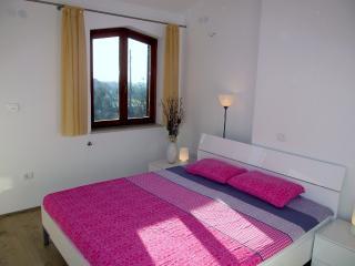 Villa Pietra(2612-6608) - Vodnjan vacation rentals