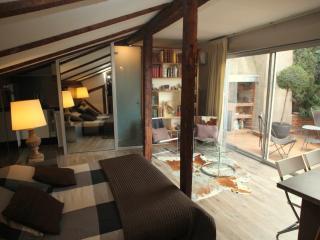 CROIX BARAGNON Terrace Citycenter - Toulouse vacation rentals