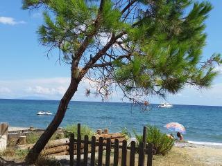 F2 (1E) dans résidence bord de mer - San-Nicolao vacation rentals