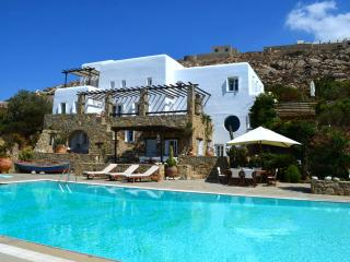 Perfect 7 bedroom Villa in Psarou - Psarou vacation rentals