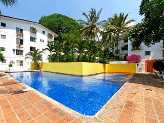 Loma del Mar Condo Drew Great Location ! - Puerto Vallarta vacation rentals