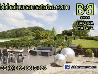 **** B&B Hakuna Matata near Pairi Daiza - Brussels - Geraardsbergen vacation rentals