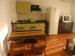 Terzy 1 modern apartment for 4 people - Novalja vacation rentals