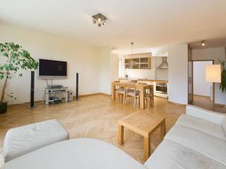 Quiet bright & cosy Sopot Apartment - Gdansk vacation rentals